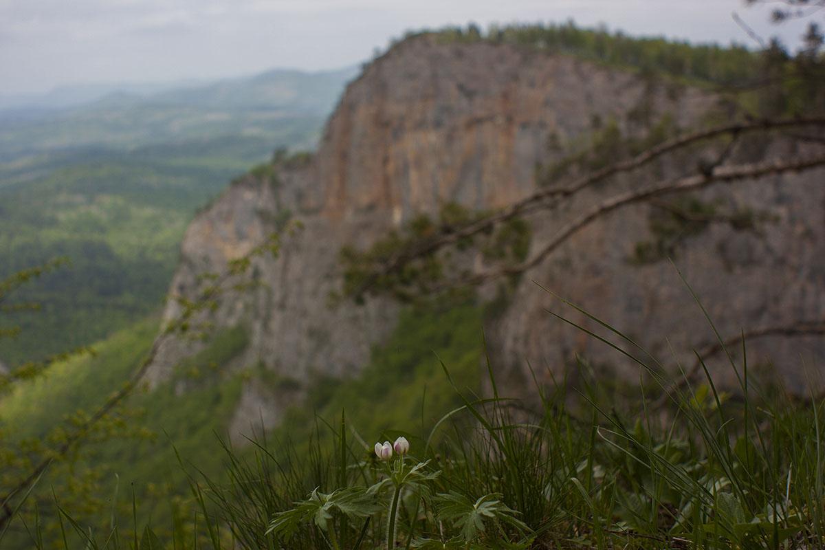 Каньон реки Ходьзь