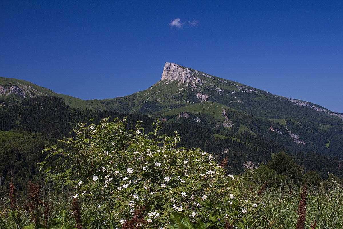 Вид на гору Большой Тхач с хребта Бабук