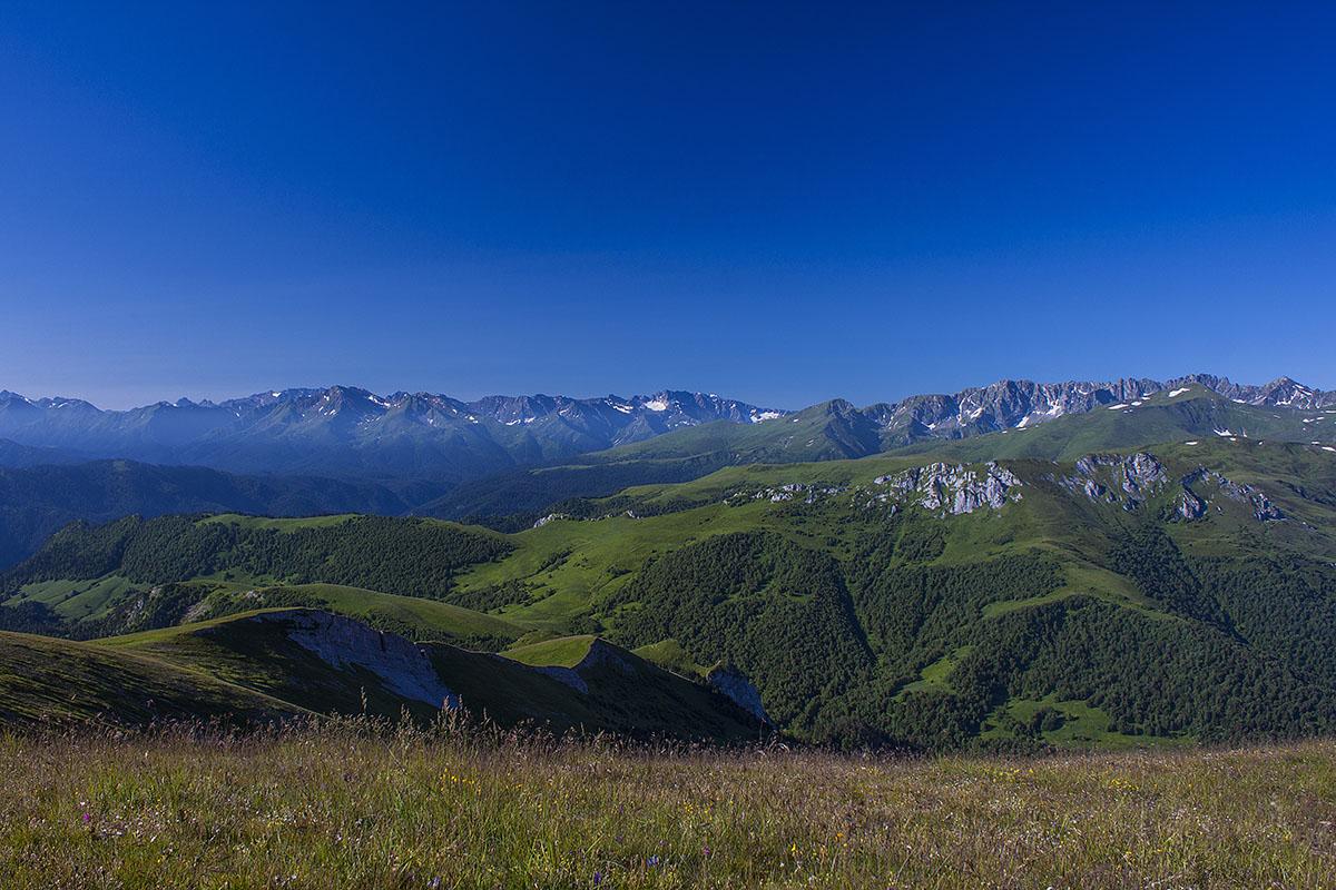 цветущее поле пред вершиной горы восточный Ачешбок