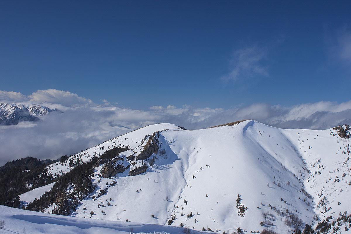 thach-sneg