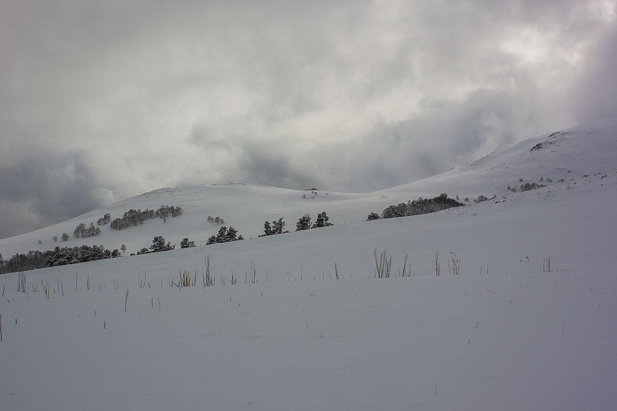 Хребет Скала белая