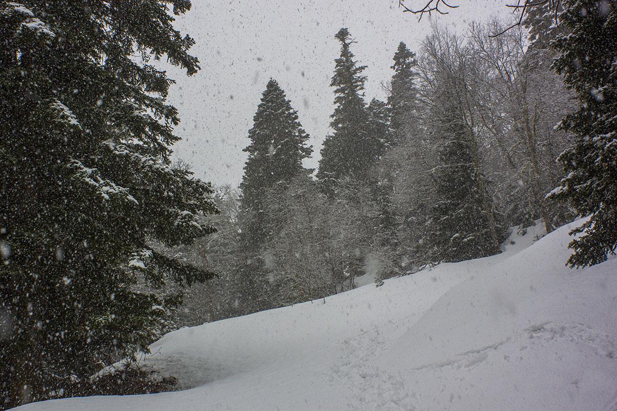 Рожкао снегопад