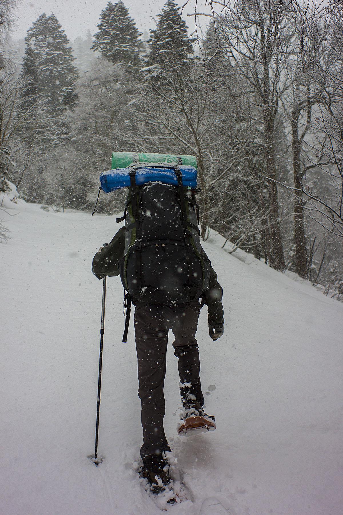 В снегоступах